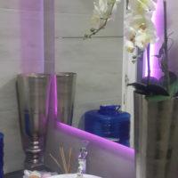 Neon Lighting In Bathroom